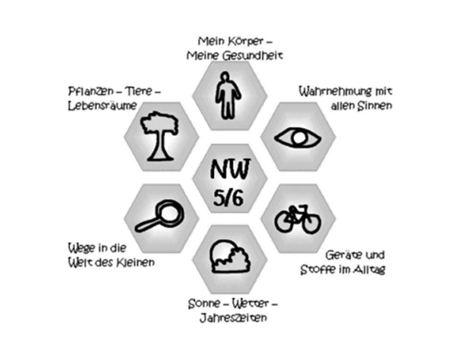 Einführung in den NW-Unterricht